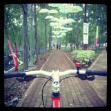 Taman Honda Tebet #HiddenPark